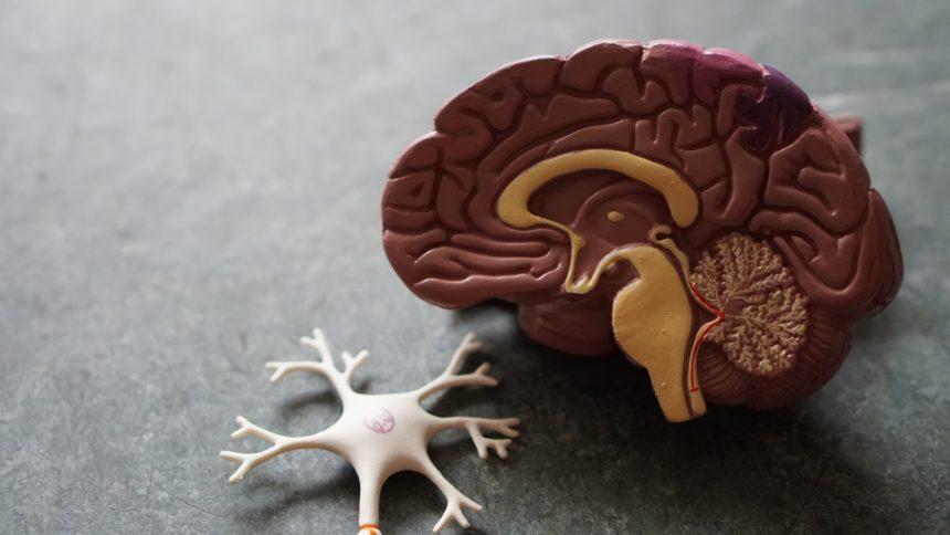 Tętniak mózgu- czym jest i czym grozi?