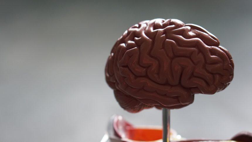 Wstrząśnienie mózgu- czym się charakteryzuje?